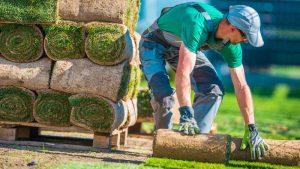 Choosing a Landscape Designer